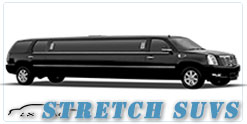 Orlando wedding limo