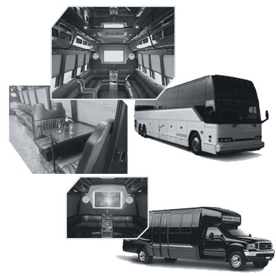 Party Bus rental and Limobus rental in Orlando, FL