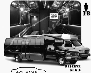 Orlando Party Bus party Bus | 18 passenger PartyBus in Orlando