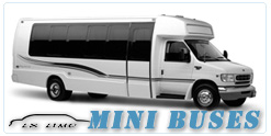 Mini Bus rental in Orlando, FL